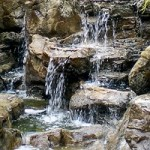 Forrásvíz- A rugalmasság esszenciája